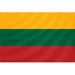 Lietuvos vėliavėlė (10 vnt.)