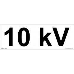 10kV 70*210mm 501