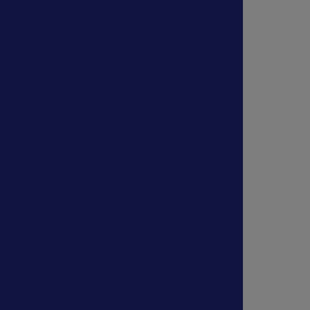 Tamsiai mėlyna-pilka